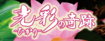 hikari_no_kiseki